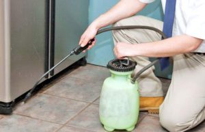 Pinnnacle Pest Control Fumigation